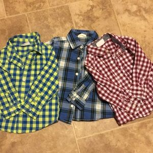 18-24 Mo. Boys Crazy 8 Button Downs, Set of 3!